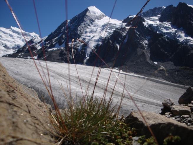 Combin de Corbassière, Grand Combin, Glacier de Corbassière